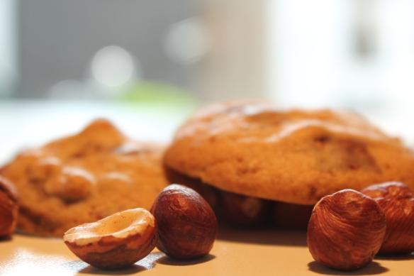 Milk chocolate and hazelnut cookie